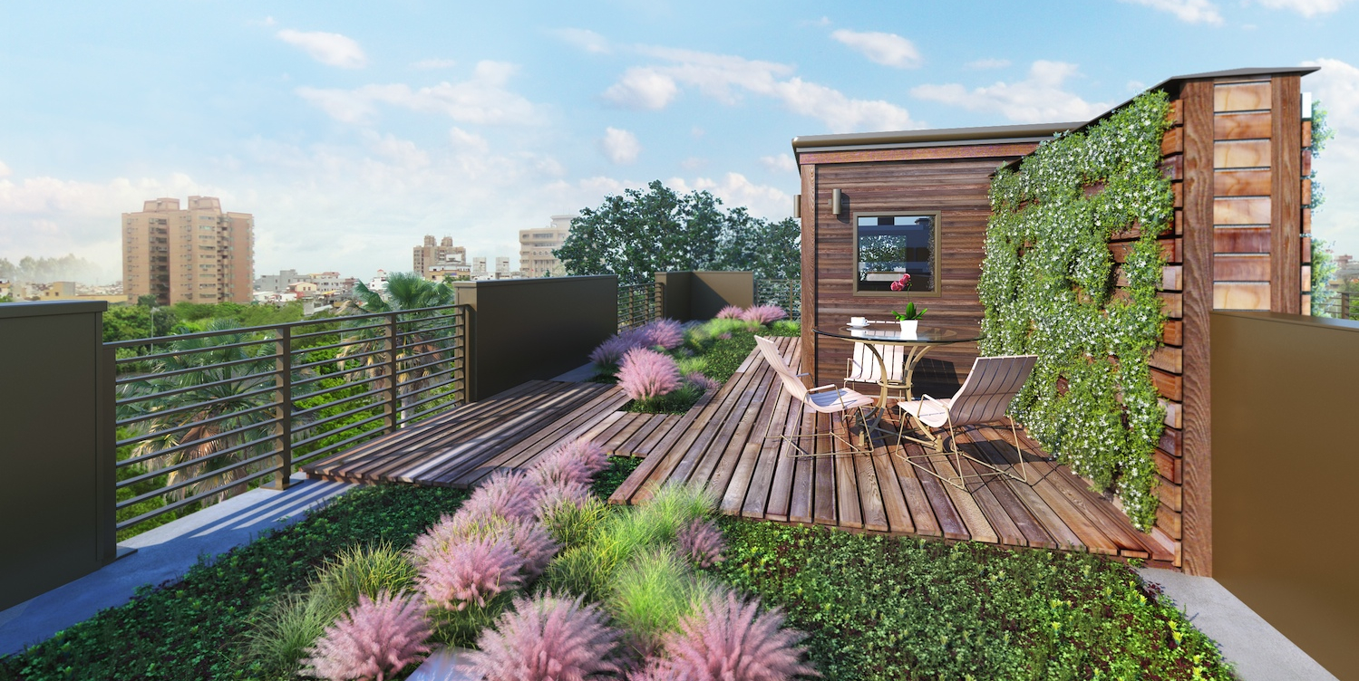 An Extraordinary Living Roof